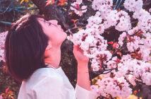 Modèle posant devant un cerisier en fleur lors d'Hanami
