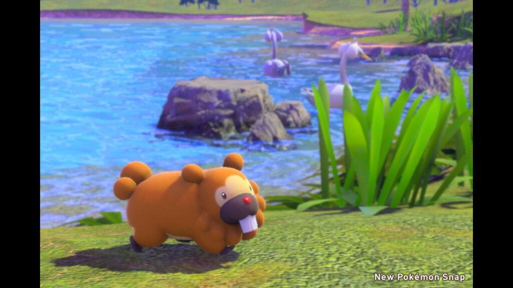Photo_Pokémon